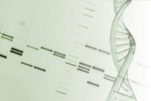 DNA methylation epigenetics